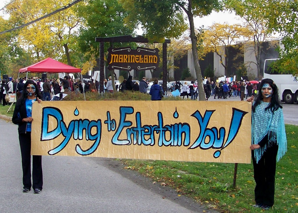 marineland-protest-banner-oct-20123