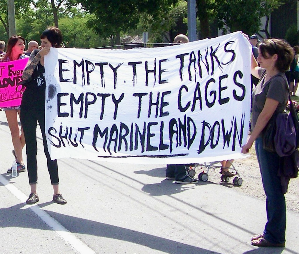 shut-down-marineland-best