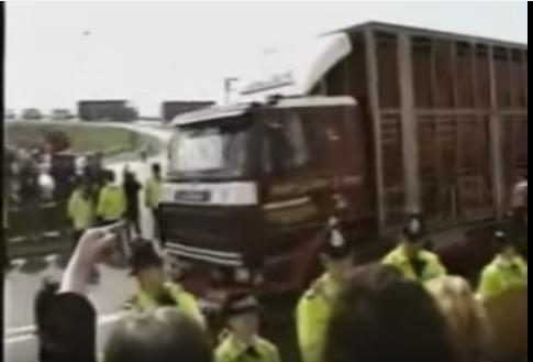 Blocage de bétaillères en Angleterre dans les années 90